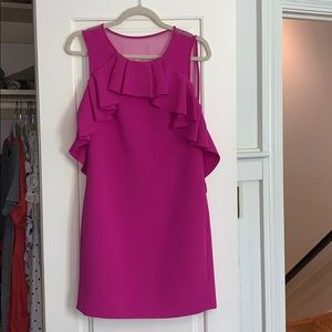 Raspberry Diane von Furstenberg Dress Size 4